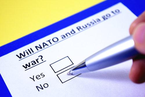 Die (Um)Verwandlung der NATO